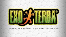 Exo Terra Reptiles